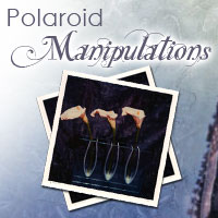 Polaroid Manipulations