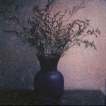 Polaroid Manipulations - Flora